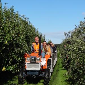 Trein door de boomgaard tijdens appelplukken