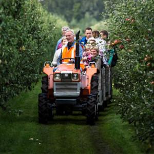 Trein door boomgaard voor de pluk van appels